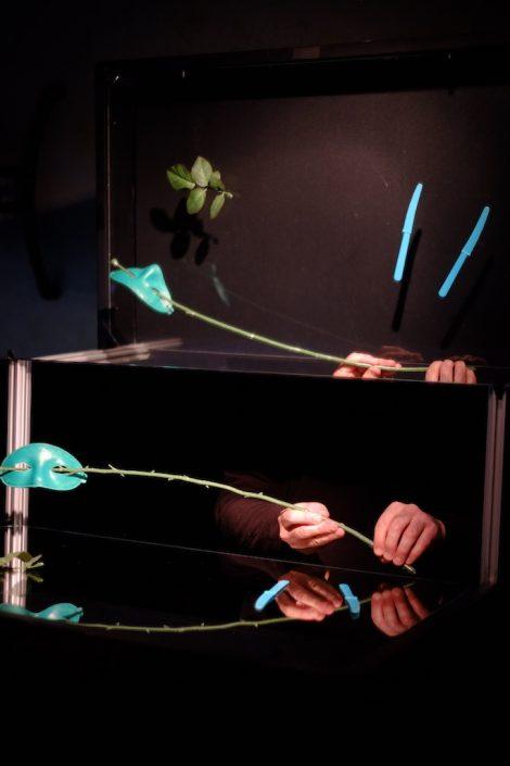 Stage de manipulation d'objets à la manière de Pierre Fourny. Machine miroir, masque, plante et couteaux. Photo Emmanuel Pierrot. Soissons.2015